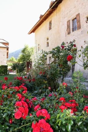 Цветущий розарий в саду аббатства /// Blossoming roses in the abbey garden